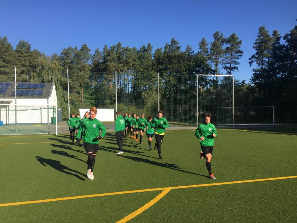 20180929 C1-Junioren Punktspiel gegen Birkenwerder 2-1 Niederlage (1)